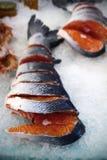 三文鱼鱼在鱼商店 图库摄影