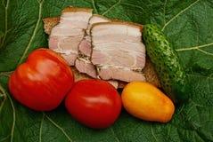 三明治用肉和面包和新鲜蔬菜在板料 库存图片