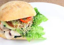 三明治蔬菜 免版税库存图片