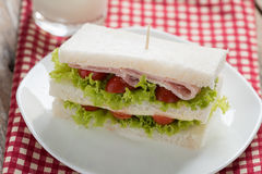 三明治、火腿和乳酪在白色板材 免版税库存照片