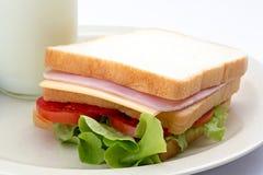 三明治和新鲜的牛奶 免版税库存图片