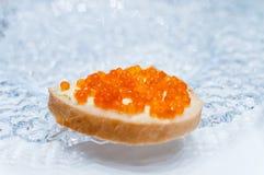 三明治用在一块玻璃板的三文鱼红色鱼子酱 免版税图库摄影