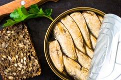 三明治用沙丁鱼 库存图片
