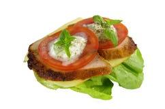三明治用肉 库存图片