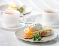 三明治用荷包蛋和新鲜的干酪 免版税库存照片