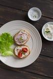 三明治用萝卜、西红柿和乳酪在板材点燃 免版税库存照片