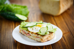 三明治用香肠、乳酪、莴苣和鸡蛋 图库摄影