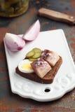 三明治用鲱鱼 图库摄影