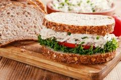 三明治用鸡丁沙拉蕃茄 免版税库存照片