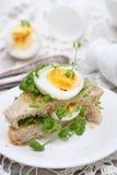 三明治用鸡蛋和水芹 免版税库存图片