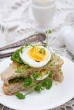 三明治用鸡蛋和水芹 图库摄影