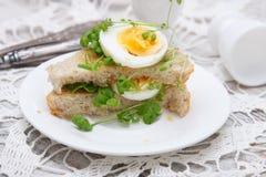 三明治用鸡蛋和水芹 免版税图库摄影