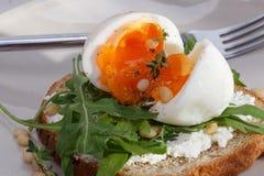 三明治用鸡蛋 免版税图库摄影