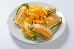 三明治的不同的类型用在一块白色板材的炸薯条 库存图片