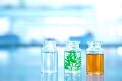 三有绿色叶子的清楚的小瓶在实验室科学背景中 库存图片