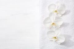 三朵兰花和白色特里毛巾 免版税库存图片