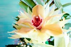三朵兰花花束的一个兰花特写镜头在木背景概念生日美妙地装饰的开花 图库摄影