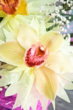 三朵兰花花束的一个兰花特写镜头在木背景概念生日美妙地装饰的开花 免版税库存照片