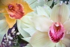 三朵兰花花束的两朵兰花特写镜头在木背景概念生日美妙地装饰的开花 免版税库存图片