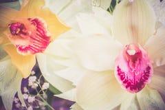 三朵兰花花束的两朵兰花特写镜头在木背景概念生日美妙地装饰的开花 库存图片