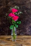 三朵明亮的桃红色玫瑰 免版税库存图片