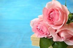 三朵桃红色玫瑰花束在蓝色背景的 图库摄影