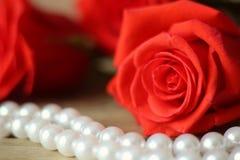 三朵玫瑰花红色与珍珠在木背景特写镜头成串珠状 库存图片