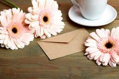 三朵美丽的大丁草花 库存图片