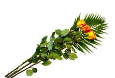 三朵黄色红色玫瑰美丽的花束  图库摄影