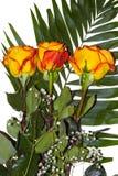 三朵黄色红色玫瑰美丽的花束  免版税库存照片