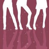 三条女孩性感的腿模型 库存照片