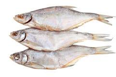 三条盐干鱼 库存图片