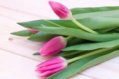 三桃红色郁金香花束在木桌上说谎 免版税库存照片