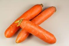 三棵原始的红萝卜 图库摄影
