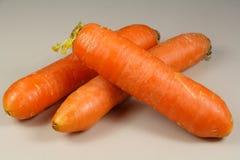 三棵原始的红萝卜 库存照片