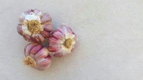 三棵大蒜圆白菜 免版税图库摄影