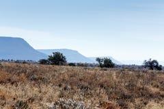 三棵山和树- Cradock风景 免版税库存图片