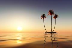 三棵棕榈 免版税图库摄影
