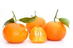 三棵橙色柑桔 库存图片