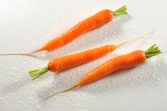 三棵湿红萝卜 免版税库存照片