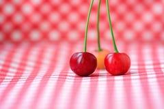 三棵红色樱桃 库存图片