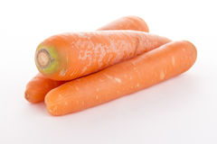 三棵红萝卜景色 免版税库存图片