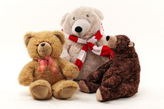 三玩具熊 库存照片