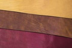 三种颜色皮革 图库摄影