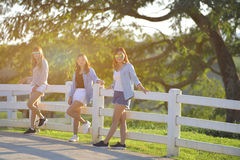 三站立在篱芭室外温暖的口气的美丽的女孩 库存图片
