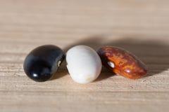 三粒色的五谷豆 免版税库存图片