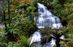三胞胎落, Otway国家公园,澳大利亚 库存图片