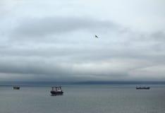 三艘船在符拉迪沃斯托克附近的日本海 免版税库存照片