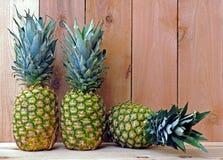 三菠萝 库存图片