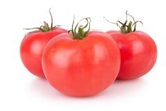 三被隔绝的成熟蕃茄 免版税库存照片